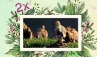 Игра Спечелете семейно пътуване до Природозащитен център