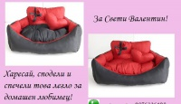 Игра Спечели легло за домашен любимец в червено и черно